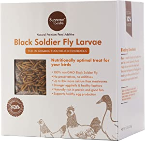 100% Non-GMO Black Soldier Fly Larvae (fed on Probiotic rich food) No Preservatives & Additives - Chicken Feed & Supplement. 5.5 Pounds Inside! Supreme Grubs