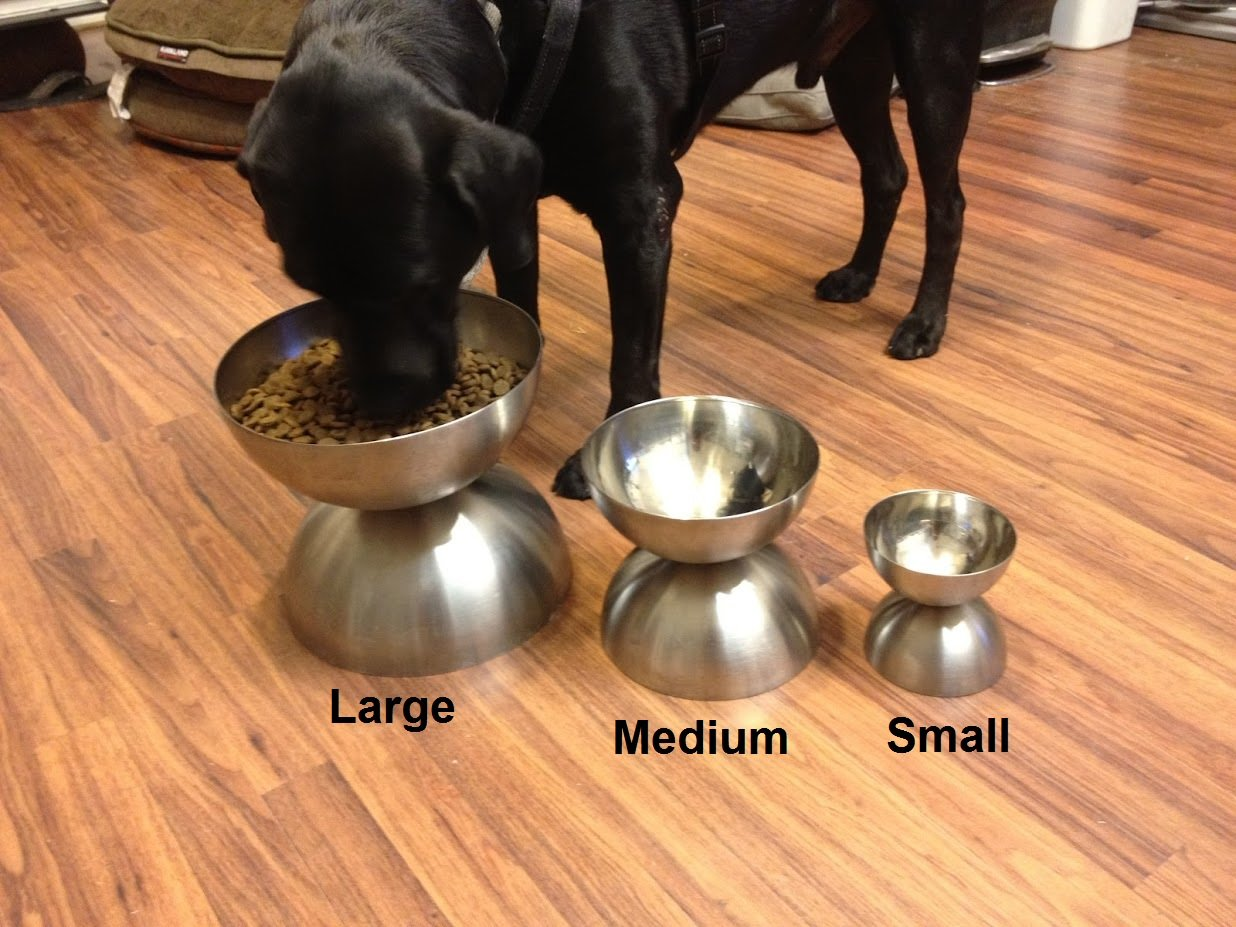 Large Neo Bowl Elevated Raised Dog Feeder Stainless Steel Cat Lab Dish Bowls