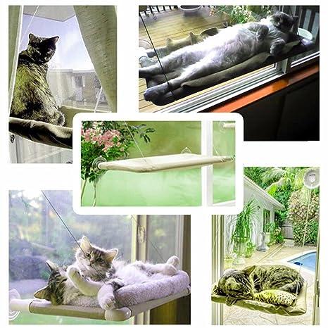 Wysar (TM) Acepta lindo que cuelga Camas cojinete 20kg Sunny asiento montado en ventana