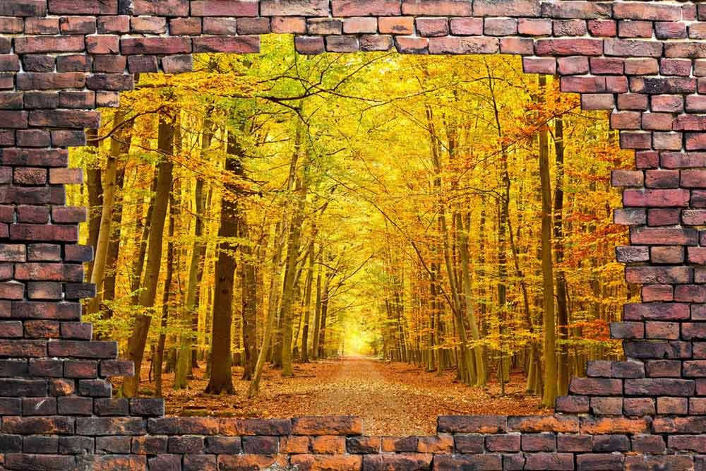 Large Wall Mural Beautiful Autumn Landscape Viewed through a Broken ...