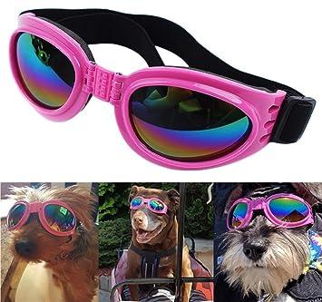 DUBENS Hundebrille Sonnenbrille wasserdichten Schutz Sun