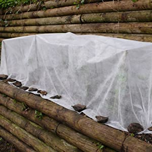 plant-cover-freeze-protection