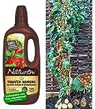 BALDUR-Garten Set Tomtato® Tomate und Kartoffel an einer Pflanze + Naturen-Bio-Dünger 1 Set