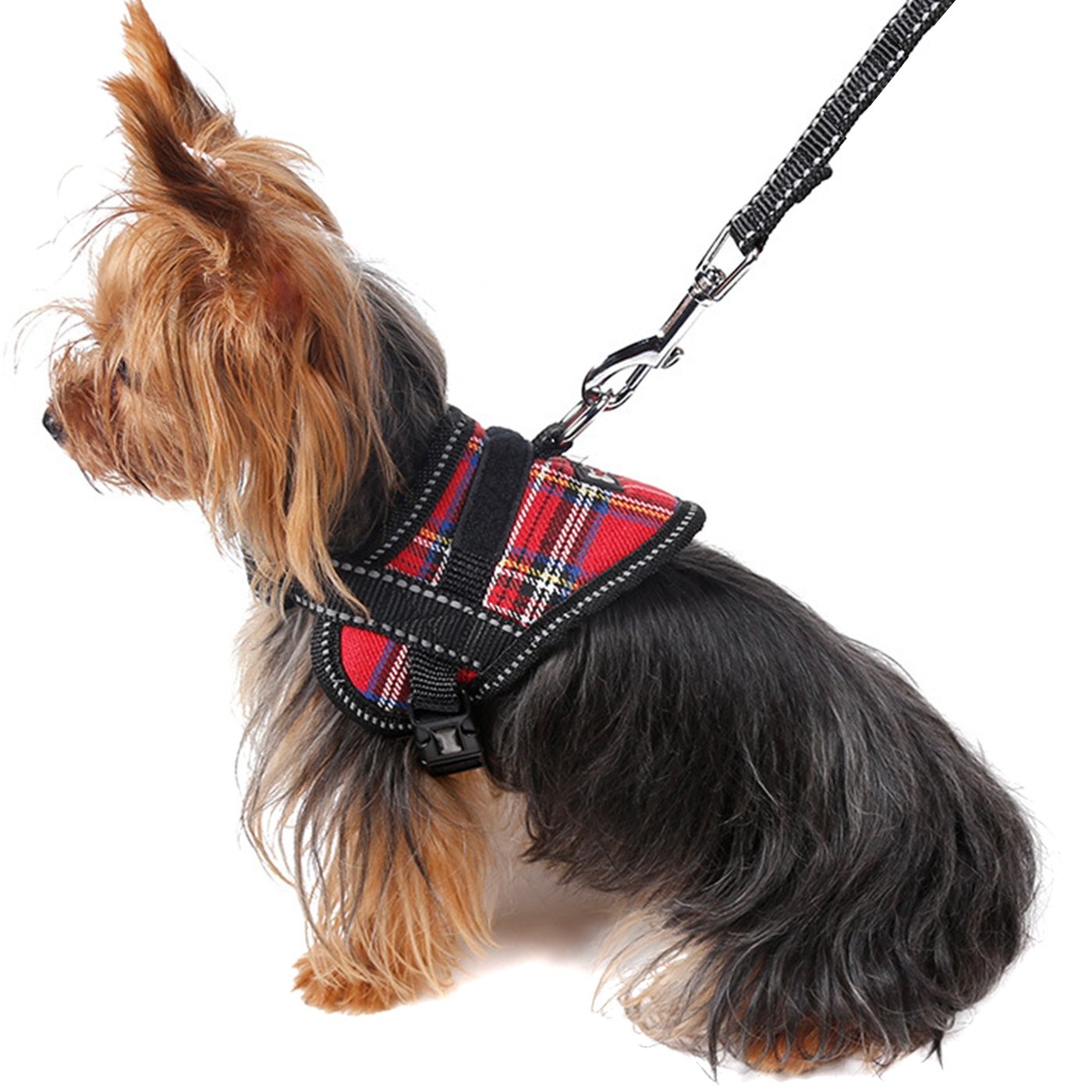 Alfie Pet by Petoga Couture - Justice Harness Vest and Leash Set - Color: Red, Size: Medium
