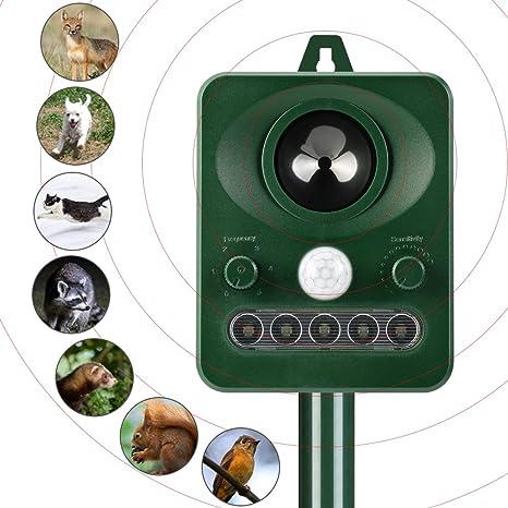 Schema Elettrico Ultrasuoni Per Cani : Potenti dissuasori ad ultrasuoni per piccioni