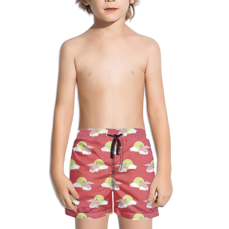 Etstk Flying Pig Kids Durable Trunks for Men