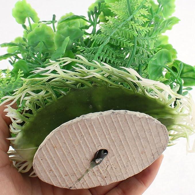Amazon.com : eDealMax plástico pecera acuario emulational hierba ornamento planta 17cm Altura : Pet Supplies