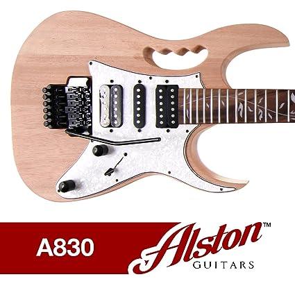 amazon com alston guitars diy electric guitar kit bolt on  alston guitars kit wiring diagram #2