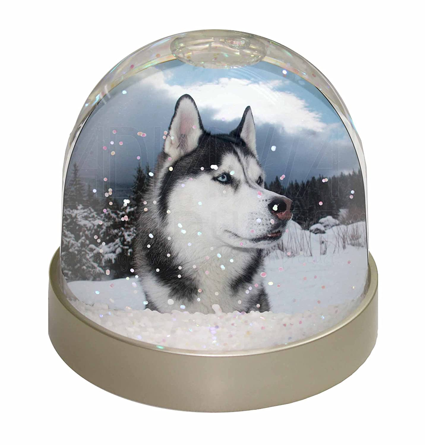 Advanta Siberian Husky Dog Snow Dome Globe Waterball Gift, Multi-Colour, 9.2 x 9.2 x 8 cm Advanta Products AD-H52GL