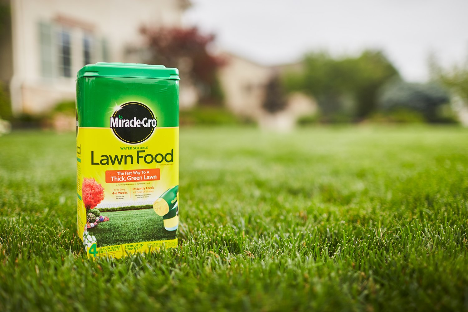 Amazon com: Miracle-GRO Water Soluble Lawn Food, 5 lbs (Not