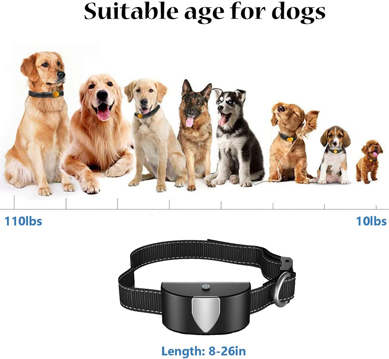 Collar antiladridos Recargable y Resistente SLE Collar de Adiestramiento para Perros al Remoto de 600 Metros