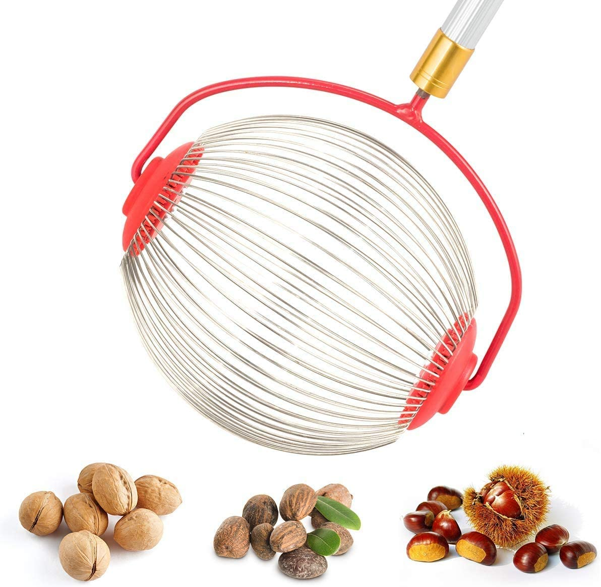 """A Picks Up Walnuts Walnut Picker Tool Adjustable Lightweight Rolling Nut Wizard Picker Collector for Lawn Garden DZT1968 Medium Nut Gatherer Pecans and Other Objects 1/"""" to 3/"""" in Size"""