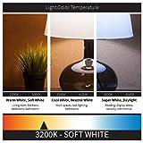 Sunlite 40158-SU 12-Pack G16.5 Globe Bulbs 40
