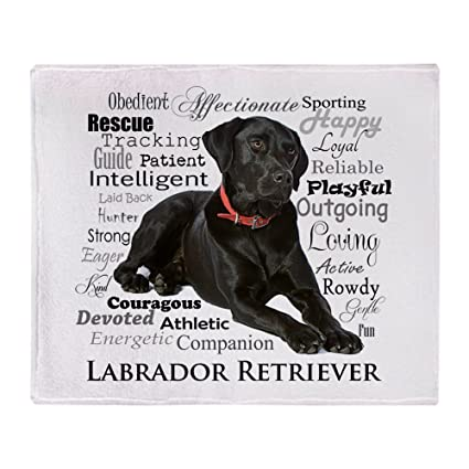 ad1a2dc47eda Amazon.com: CafePress Black Lab Traits Soft Fleece Throw Blanket, 50 ...