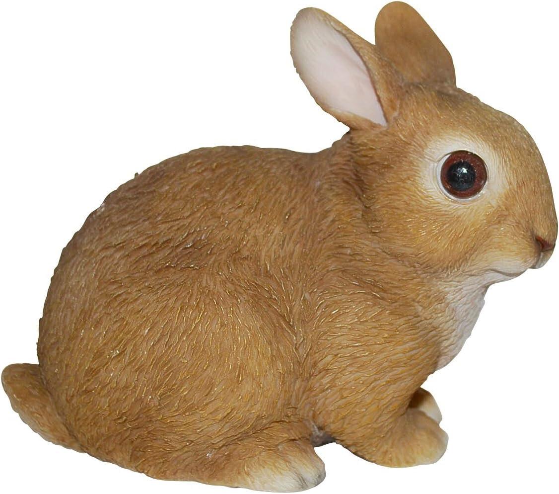 Vivid Arts Coniglio per bambini
