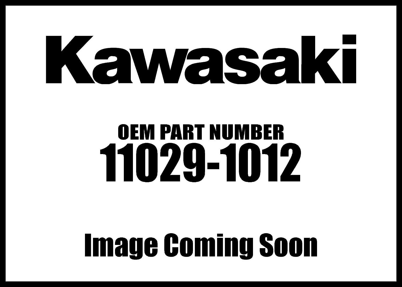 Kawasaki 2000-2001 W650 Element Assembly Air Filt 11029-1012 New Oem