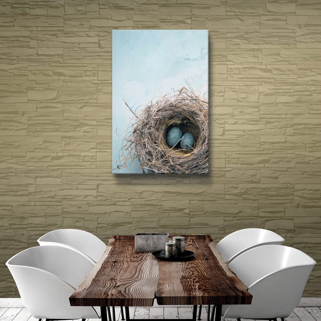 16 by 24-Inch 0ray017a1624w ArtWall Blue Nest Gallery Wrapped Canvas Art by Elena Ray