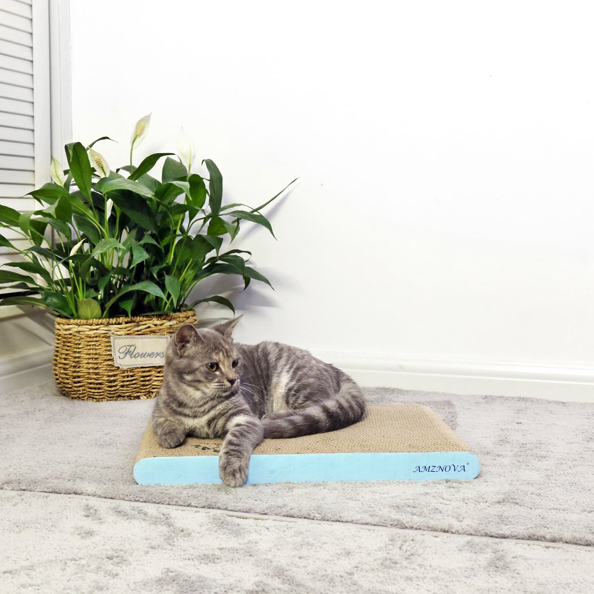 3 Pack Baby Blue AMZNOVA Cat Scratcher Cardboard Scratching Pads Scratch Sofa Lounge Narrow