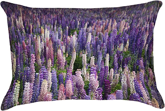 ArtVerse Kassey Downard 14 x 14 Cotton Twill Double Sided Print with Concealed Zipper /& Insert Lavender Field Pillow