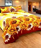 Homefab India 140 TC Polycotton Double Bedsheet with 2 Pillow Covers - Multicolour