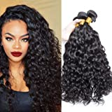 Ali Moda Hair Malaysian Water Wave 3 Bundles Virgin Hair and Unprocessed Human Hair Extension