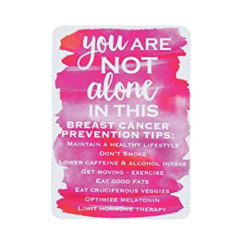 Amazon.com : Fun Express 2019 Pink Ribbon Wallet Card Calendars : Office Products