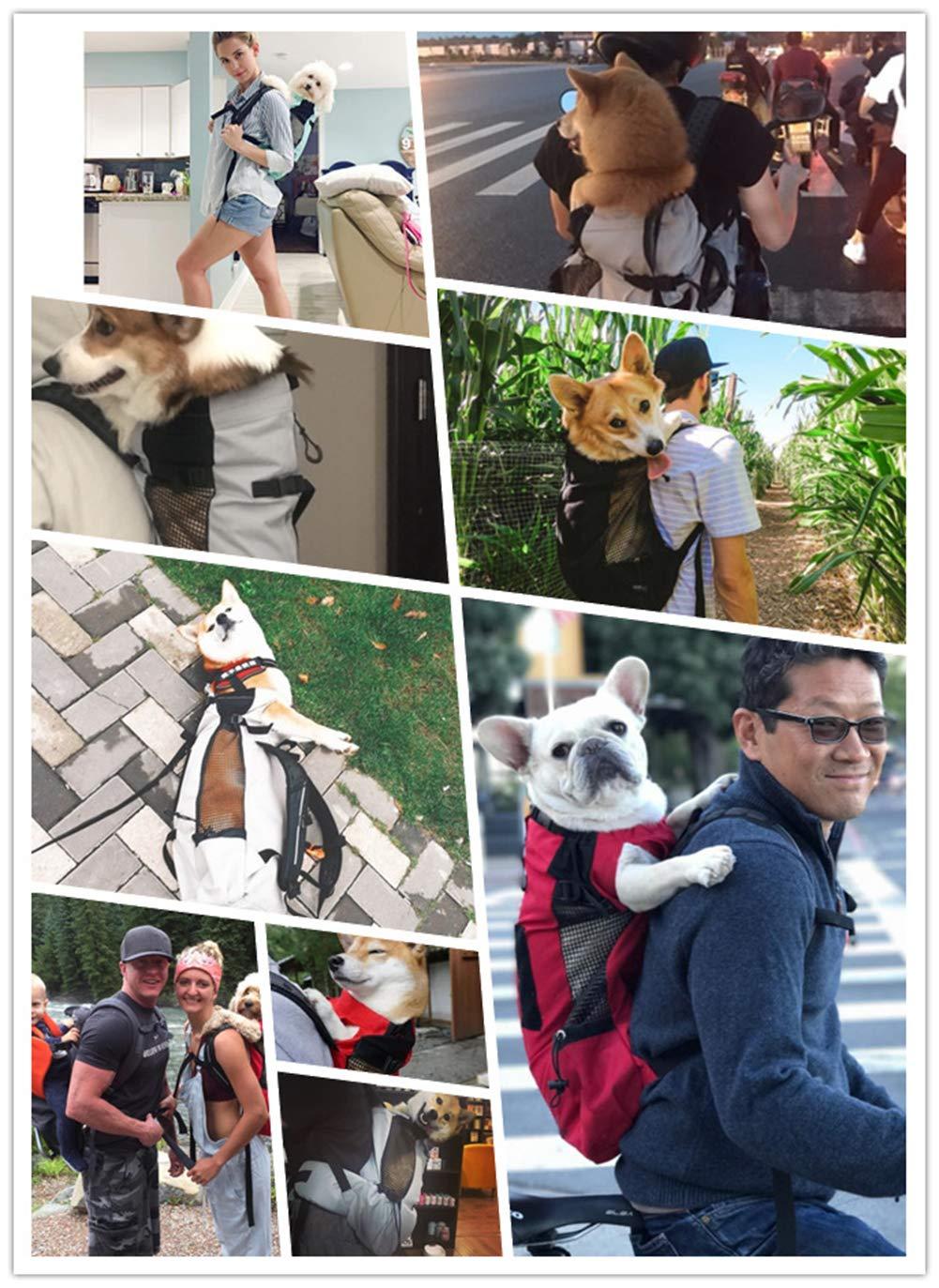 Mochila para Mascotas Perros Portabeb/és Compras Negro L LNFA Mochila de Transporte para Perros y Gatos Senderismo Bolsa de Transporte para Mascotas