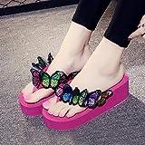 HHei_K Women Butterfly Floral Wedges Flip Flops
