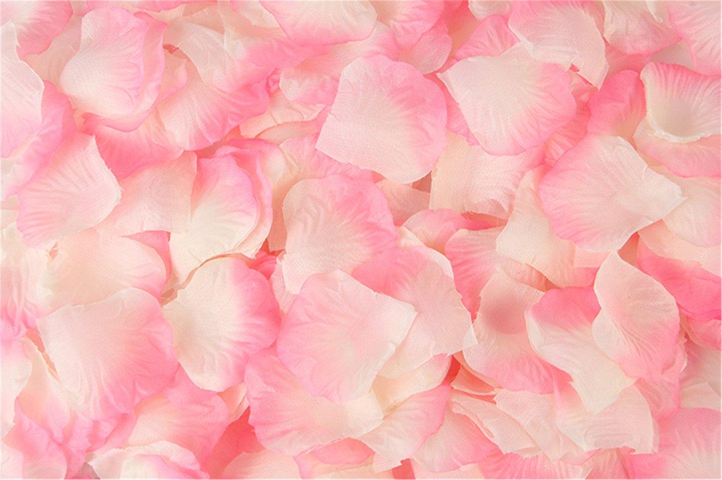 Vivianbuy 5000ピース 人工シルクフラワー レッドローズ花びら ウェディングパーティー ブライダルデコレーション用 B035-24 B07GWXH9DV Pink With White