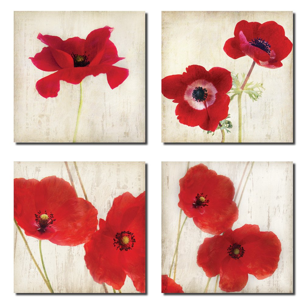 Amazon Beautiful Bright Red California Poppies Four 12x12 Inch