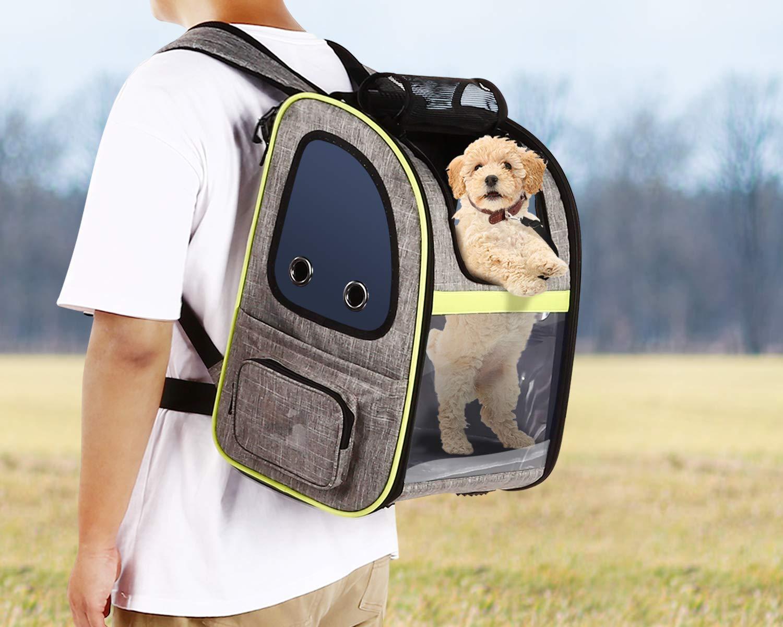 Pecute Haustier Expansions Rucksäcke für Hund und Katzen, Tragbare Transparente und Erweiterbare Ourdoor Faltbarer Raum Tragetasche,grau (maximale Last 20kg)