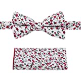 "Dan Smith Men's Fashion Print Cotton Bow Tie Adjustable Neck Size up to 26"", Matching Hanky Available"