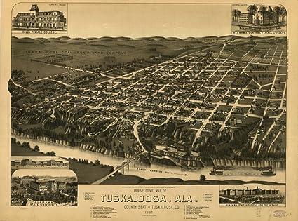 Amazon.com: 1887 map of Tuscaloosa, Alabama Perspective of ... on wilmington county map, tuscaloosa murder, dahlonega county map, geneva county map, charlottesville county map, tuscaloosa city, marion county map, ann arbor county map, lake stevens county map, bowling green county map, winston county map, alabama map, high point county map, south bend county map, little rock county map, fort wayne county map, beverly hills county map, crenshaw county map, northwest ga county map, dayton county map,