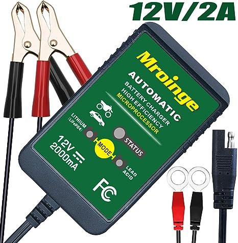 Amazon.com: Mroinge - Cargador de batería de 6 V 12 V para ...