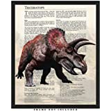 Triceratops Dinosaur Wall Art Decor Prints: 8x10 Unframed Picture - Unique Room Decor for Boys, Girls, Men & Women Makes A Great Educational Gift for all ages for Under $15!