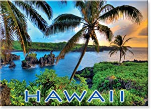 Hawaiian Art Collectible Refrigerator Magnet - Where da Coconuts Grow
