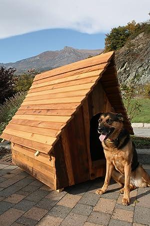 Caseta Perro Diseño 100% madera artesanal edybau Balto M exterior: Amazon.es: Jardín
