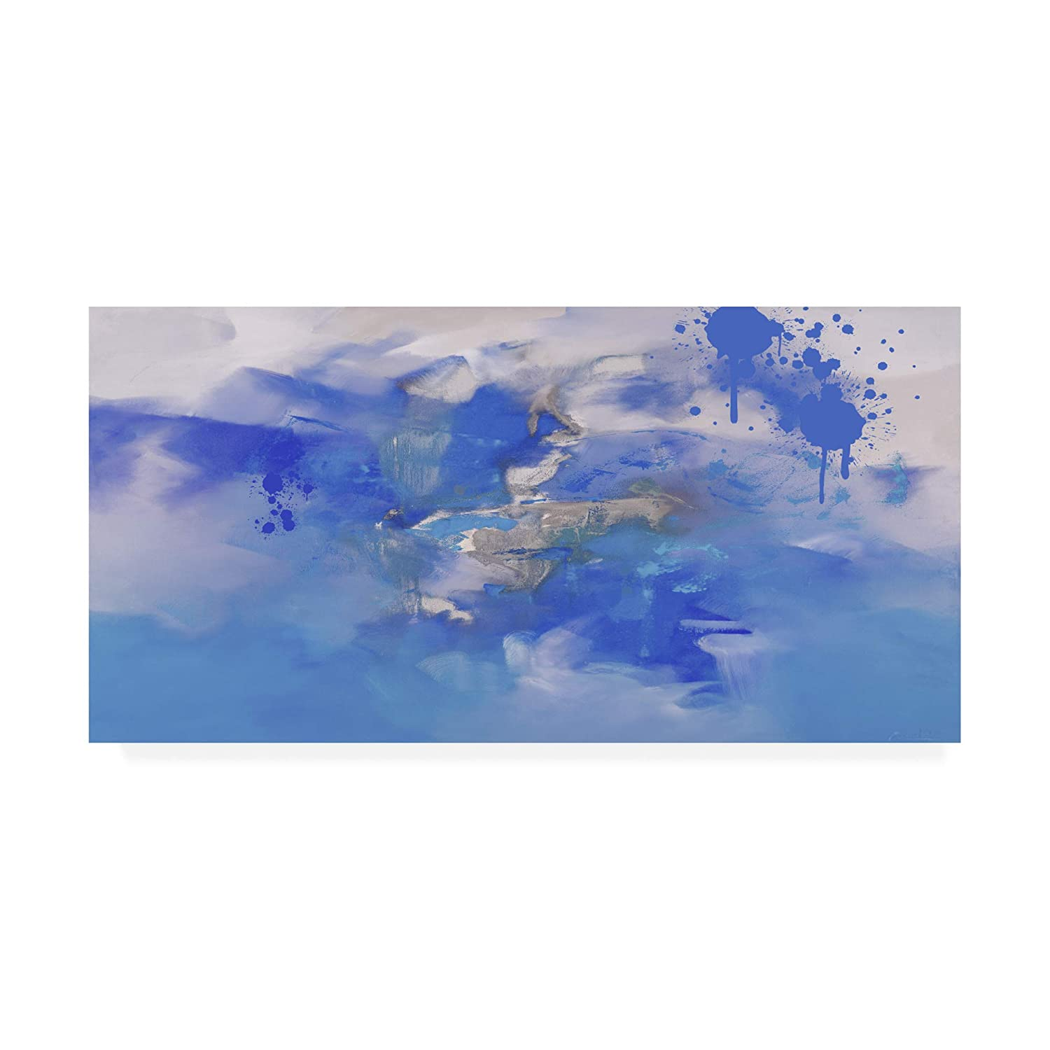 Trademark Fine Art Through a bluee Clouds by Zavaleata, 10x19