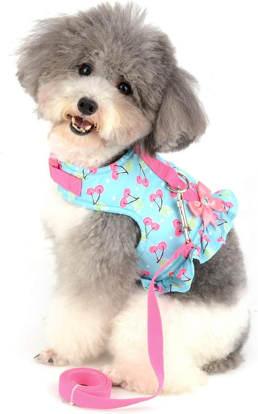 Rifle paper co floral dog harness leash set girl dog harness vest custom flower harness and leash custom small medium dog lead and harnes