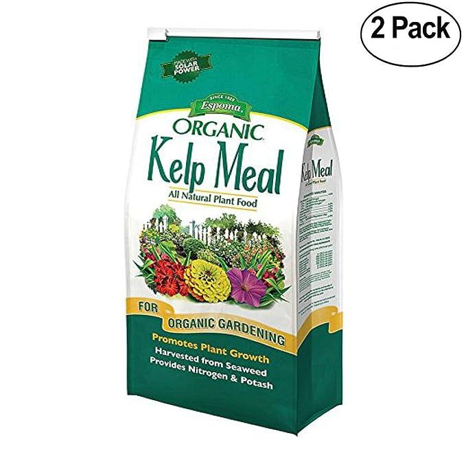 Espoma KM4 Organic Traditions Kelp Meal 1-0-2-4 lb Bag