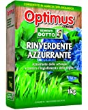 Sdd 52000040 Optimus Rinverdente Azzurrante, Verde