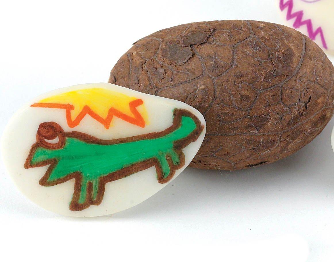 Rainforest Ramble Tagua Nut Craft Kit (makes 100 projects)
