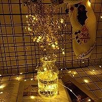 Ever smart Led String Lights, Led String Wireless Remote Control Waterproof Battery String Lights 120 LED 12 Meter, Led Light String