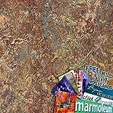 MARMOLEUM CLICK Cinch Loc 12''x12'' Tiles 1 BOX BUNDLED with Exclusive Bijan Art Gallery Postcards as a FREE Gift. [7panels/6.78 sq ft/Box] 333423 painters palette