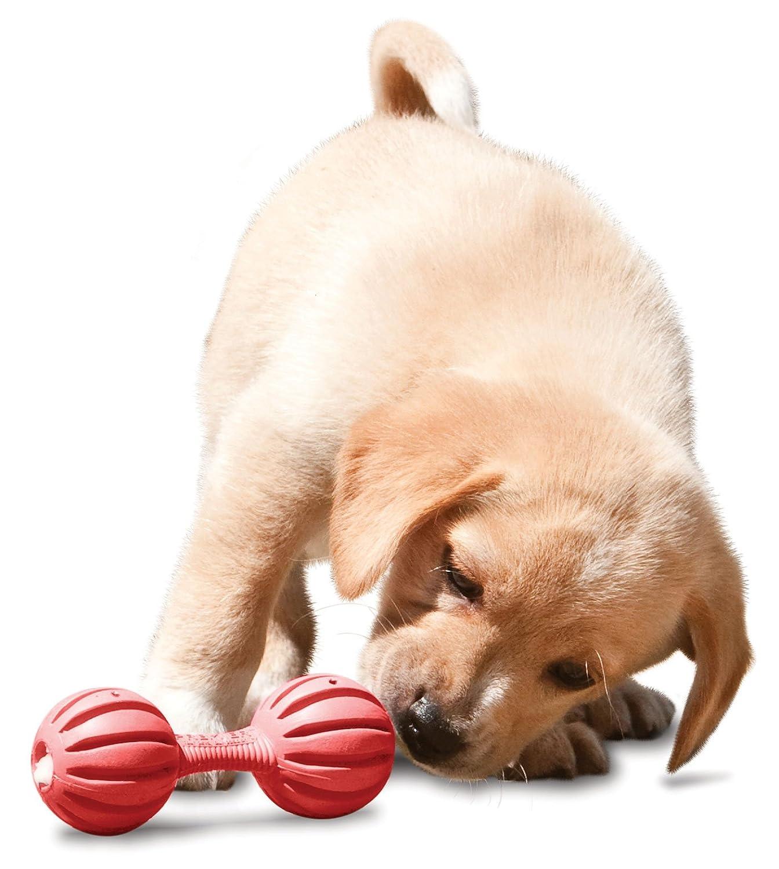 Pet Supplies Pet Squeak Toys PetSafe Busy Buddy Waggle Puppy
