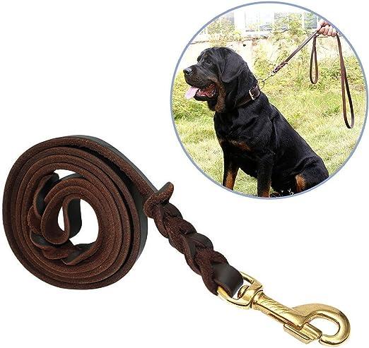 Correa Para Perros, Focuspet 1.8 m piel ajustable perros Animales ...
