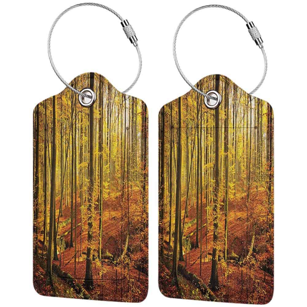 Decorative luggage tag Farm House Decor Collection Autumn in Brakelbos Forest Fall Park Golden Sunlight Photography Suitable for travel Yellow Olive Sienna W2.7 x L4.6