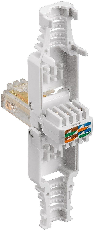 Intellinet 790482 Werkzeugloser RJ45-Stecker grau: Amazon.de: Elektronik