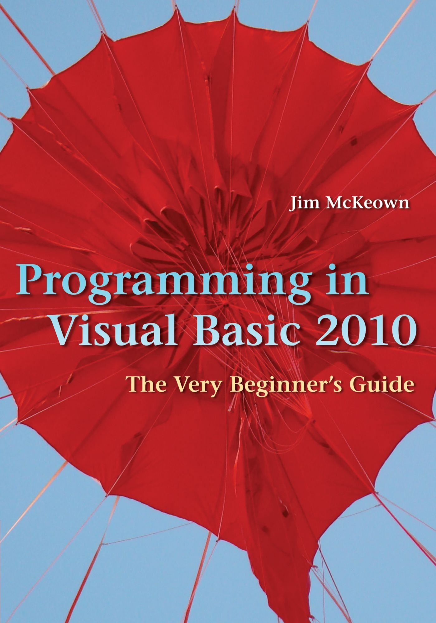 Programming in Visual Basic 2010: The Very Beginners Guide