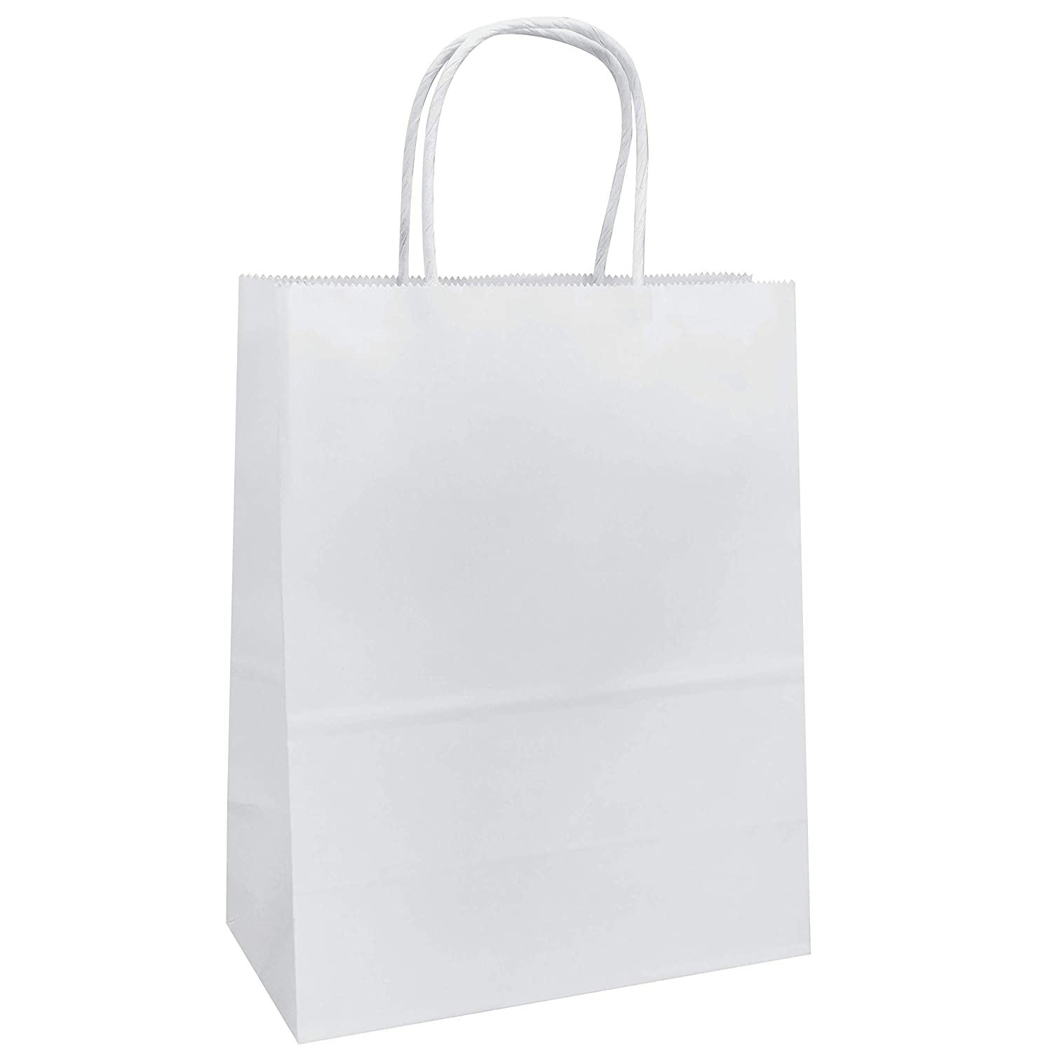 sample business plan for a paper bag company